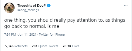 Font - Thoughts of Dog® @dog_feelings one thing. you should really pay attention to. as things go back to normal. is me 7:34 PM - Jun 11, 2021 - Twitter for iPhone 5,346 Retweets 201 Quote Tweets 70.3K Likes