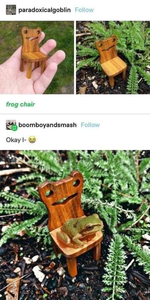 Plant - paradoxicalgoblin Follow frog chair boomboyandsmash Follow Okay l-