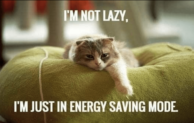 Cat - I'M NOT LAZY, I'M JUST IN ENERGY SAVING MODE.