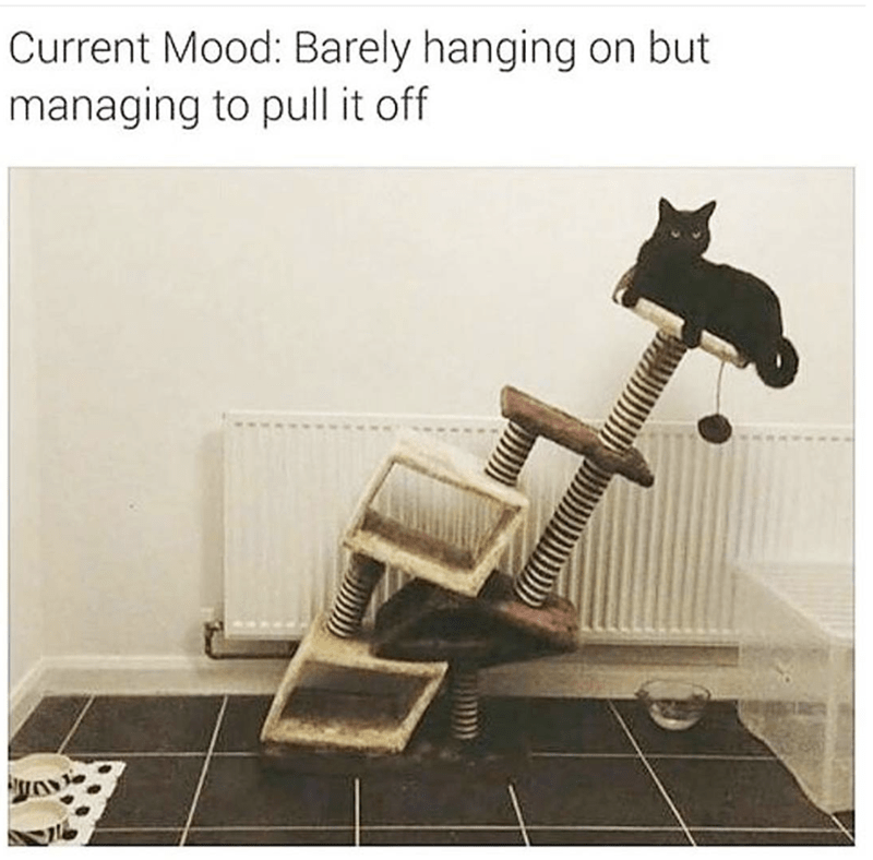 Product - Current Mood: Barely hanging on but managing to pull it off