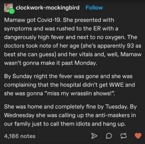 """funny tumblr story about old matriarch of family - Organism - clockwork-mockingbird Follow Mamaw got Covid-19. She presented with symptoms and was rushed to the ER with a dangerously high fever and next to no oxygen. The doctors took note of her age (she's apparently 93 as best she can guess) and her vitals and, well, Mamaw wasn't gonna make it past Monday. By Sunday night the fever was gone and she was complaining that the hospital didn't get WWE and she was gonna """"miss my wrasslin shows!"""". She"""