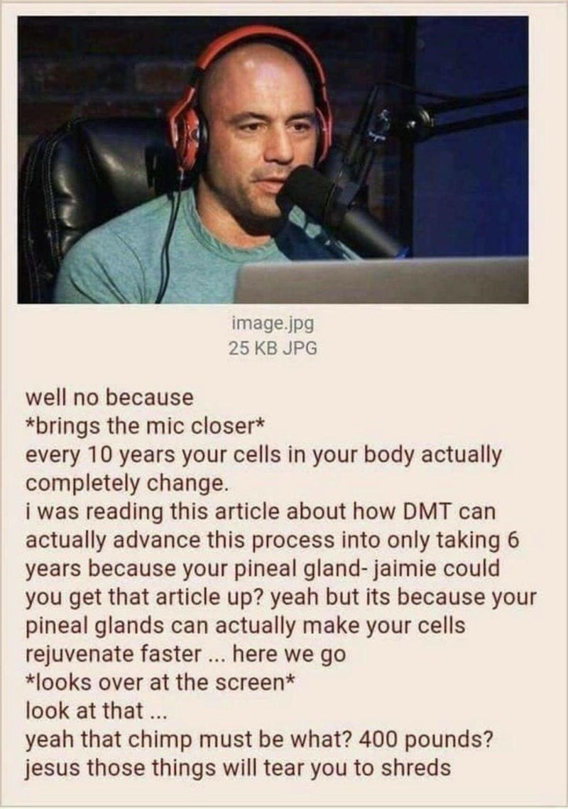 Face - image.jpg 25 KB JPG well no because *brings the mic closer* every 10 years your cells in your body actually completely change. i was reading this article about how DMT can actually advance this process into only taking 6 years because your pineal gland- jaimie could you get that article up? yeah but its because your pineal glands can actually make your cells rejuvenate faster.. here we go *looks over at the screen* look at that... yeah that chimp must be what? 400 pounds? jesus those thin