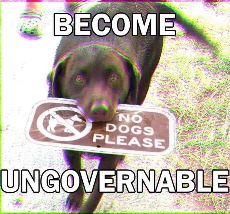 Dog - BECOME NO DOGS PLEASE UNGOVERNABLE