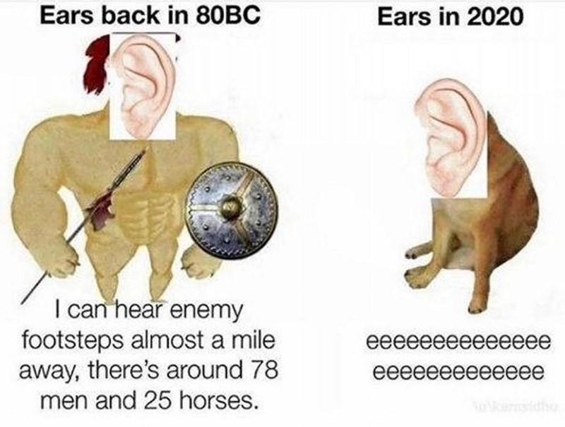 Product - Ears back in 80BC Ears in 2020 I can hear enemy footsteps almost a mile away, there's around 78 men and 25 horses. ееееееееееееее еееееееееееее