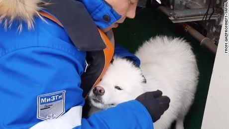 Dog - Mn3TH FROM GAZPROMNEFT-YAMAL