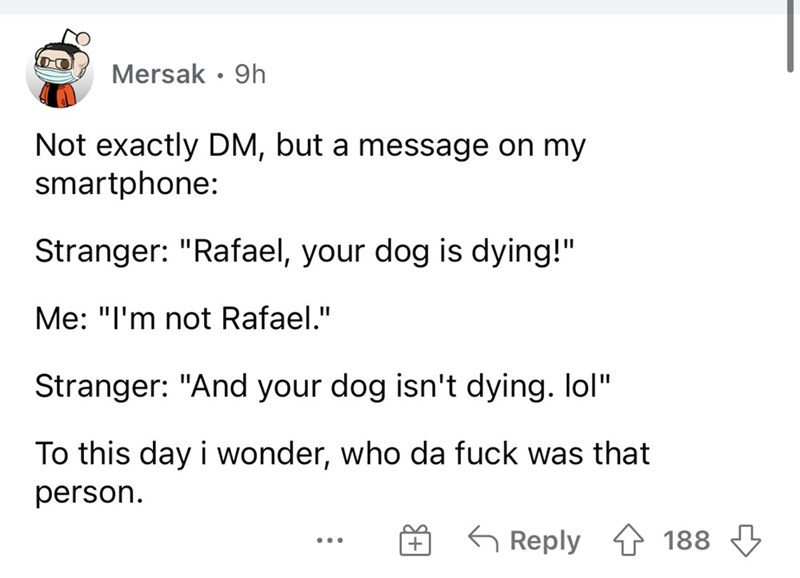"""Font - Mersak • 9h Not exactly DM, but a message on my smartphone: Stranger: """"Rafael, your dog is dying!"""" Me: """"I'm not Rafael."""" %3D Stranger: """"And your dog isn't dying. lol"""" To this day i wonder, who da fuck was that person. G Reply 1 188 ..."""