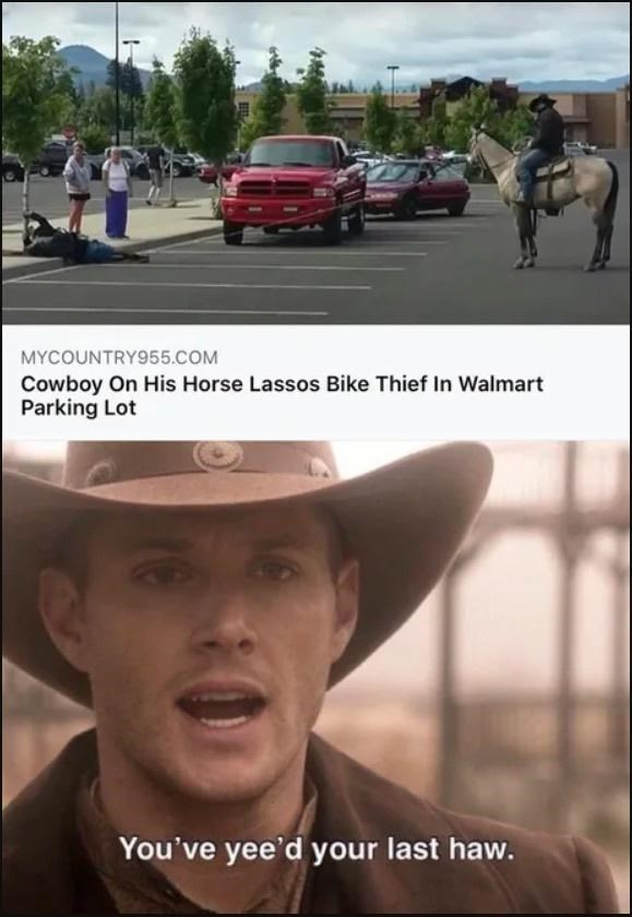 Car - MYCOUNTRY955.COM Cowboy On His Horse Lassos Bike Thief In Walmart Parking Lot You've yee'd your last haw.
