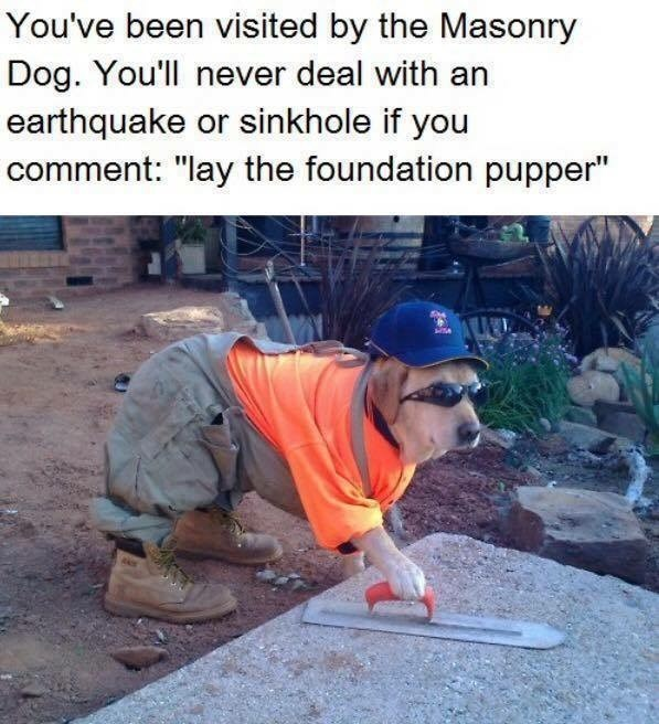 """Plant - You've been visited by the Masonry Dog. You'll never deal with an earthquake or sinkhole if you comment: """"lay the foundation pupper"""""""