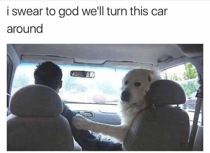 Car - i swear to god we'll turn this car around AD