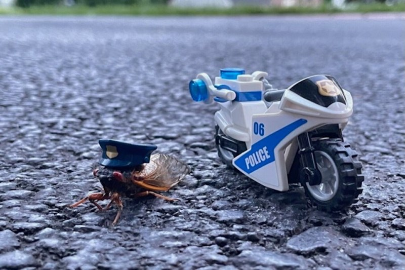 Wheel - 06 POLICE