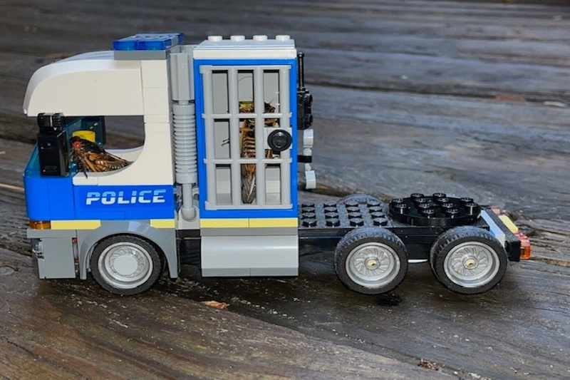 Wheel - POLICE