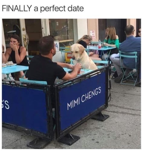 Dog - FINALLY a perfect date LEGO MIMI CHENGS
