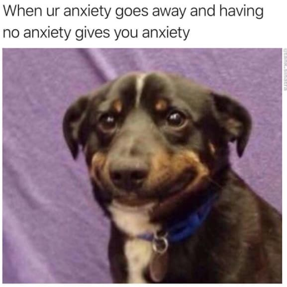 Dog - When ur anxiety goes away and having no anxiety gives you anxiety tank.Sinatra