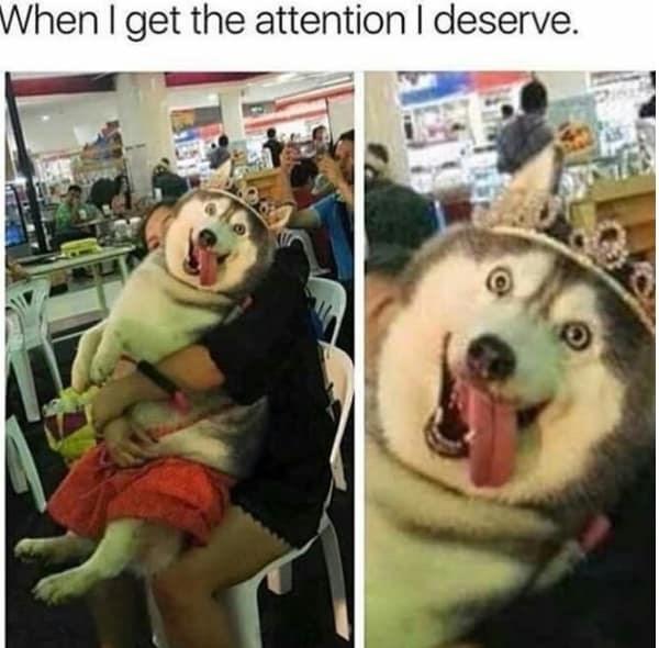 Smile - When I get the attention I deserve.
