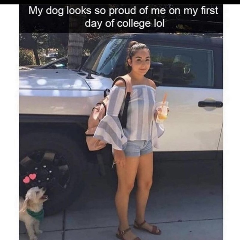 Shoe - My dog looks so proud of me on my first day of college lol