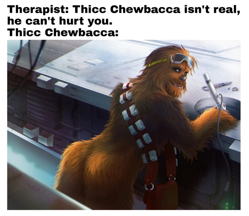Eyewear - Therapist: Thicc Chewbacca isn't real, he can't hurt you. Thicc Chewbacca: