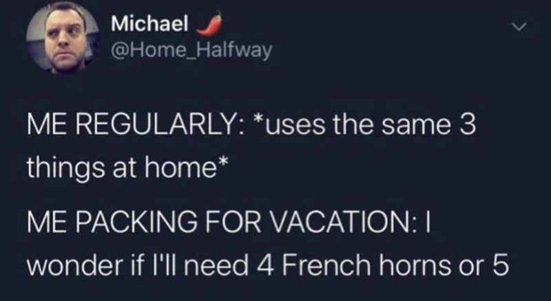 Font - Michael @Home_Halfway ME REGULARLY: *uses the same 3 things at home* ME PACKING FOR VACATION: I wonder if l'll need 4 French horns or 5