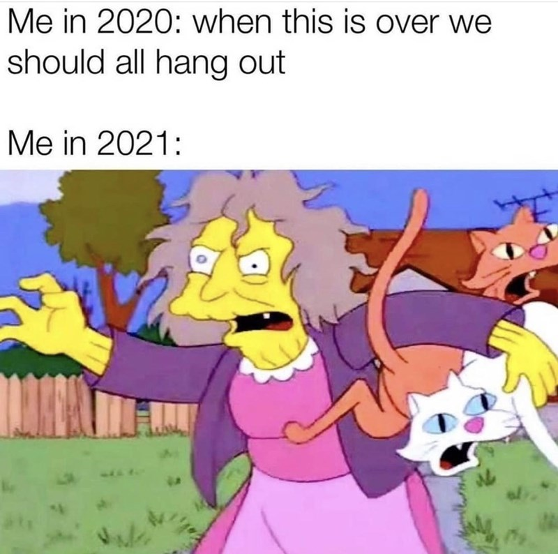 Cartoon - Me in 2020: when this is over we should all hang out Me in 2021: