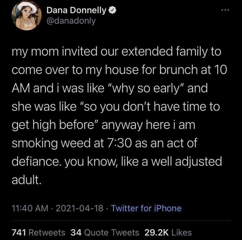 """Vertebrate - Dana Donnelly O @danadonly my mom invited our extended family to come over to my house for brunch at 10 AM and i was like """"why so early"""" and she was like """"so you don't have time to get high before"""" anyway here i am smoking weed at 7:30 as an act of defiance. you know, like a well adjusted adult. 11:40 AM · 2021-04-18 · Twitter for iPhone 741 Retweets 34 Quote Tweets 29.2K Likes"""