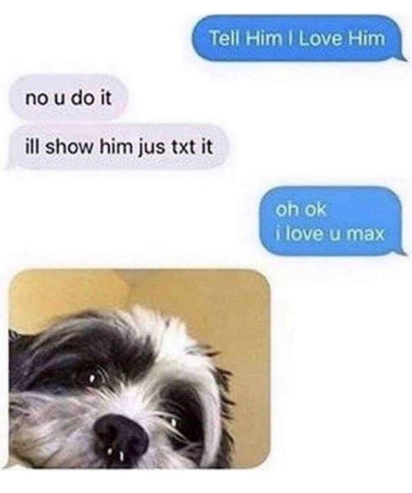 Dog - Tell Him I Love Him no u do it ill show him jus txt it oh ok i love u max