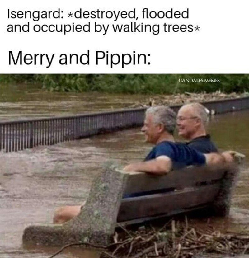 Water - Isengard: *destroyed, flooded and occupied by walking trees* Merry and Pippin: GANDALFS.MEMES