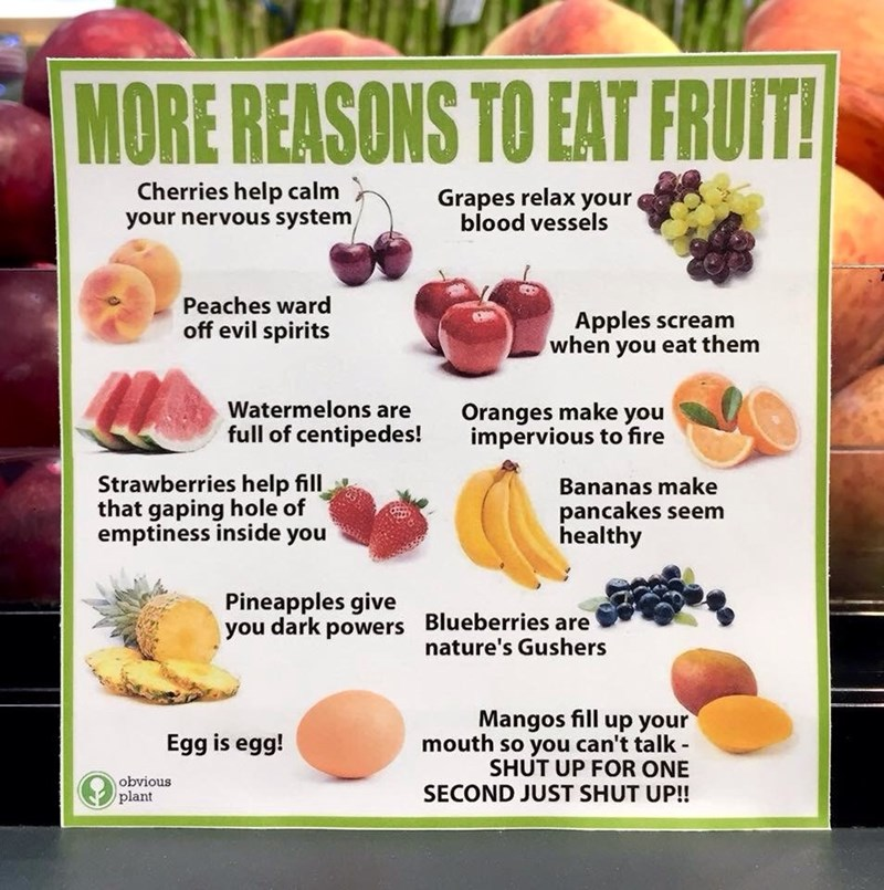 Plant - MORE REASONS TO EAT FRUIT! Cherries help calm your nervous system Grapes relax your blood vessels Peaches ward off evil spirits Apples scream when you eat them Watermelons are full of centipedes! Oranges make you impervious to fire Strawberries help fill that gaping hole of emptiness inside you Bananas make pancakes seem healthy Pineapples give you dark powers Blueberries are nature's Gushers Mangos fill up your mouth so you can't talk - SHUT UP FOR ONE SECOND JUST SHUT UP! Egg is egg! o