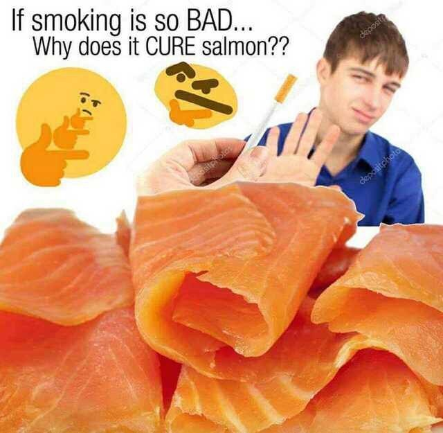 Food - If smoking is so BAD... Why does it CURE salmon?? dkiposit depasitchoto
