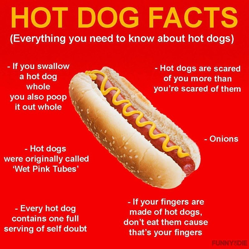 Food - HOT DOG FACTS (Everything you need to know about hot dogs) If you swallow a hot dog -Hot dogs are scared of you more than you're scared of them whole you also poop it out whole - Onions - Hot dogs were originally called Wet Pink Tubes' - If your fingers are made of hot dogs, don't eat them cause that's your fingers - Every hot dog contains one full serving of self doubt FUNNY&DIE