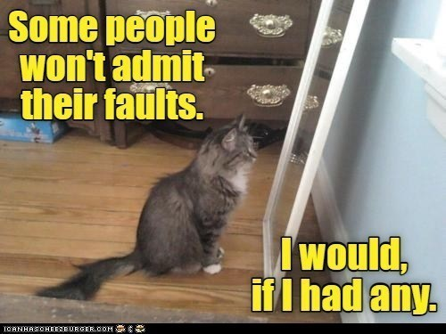 Cat - Some people won't admit- their faults. Iwould, if I had any. ICANHASCHEEZEURGER.COM