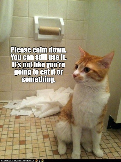 Cat - Please calm down. You can still use it. It's not like you're going to eat it or something. ICANHASCHEEZBURGER.COM