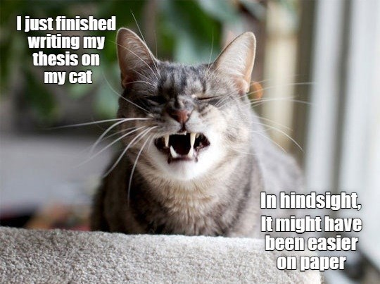 Cat - I just finished writing my thesis on my cat In hindsight, It might have been easier on paper