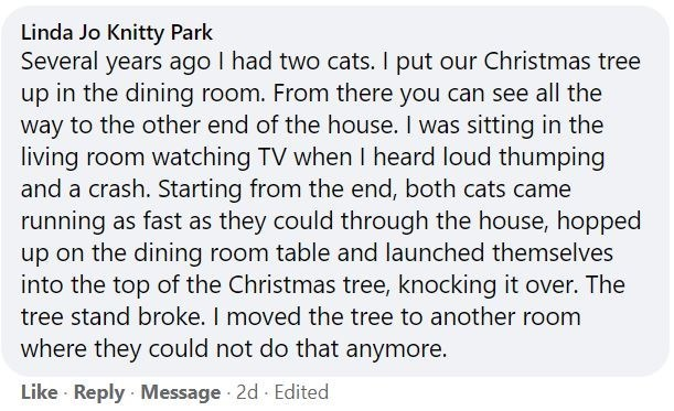 Font - Linda Jo Knitty Park Several years ago I had two cats. I put our Christmas tree up in the dining room. From there you can see all the way to the other end of the house. I was sitting in the living room watching TV when I heard loud thumping and a crash. Starting from the end, both cats came running as fast as they could through the house, hopped up on the dining room table and launched themselves into the top of the Christmas tree, knocking it over. The tree stand broke. I moved the tree