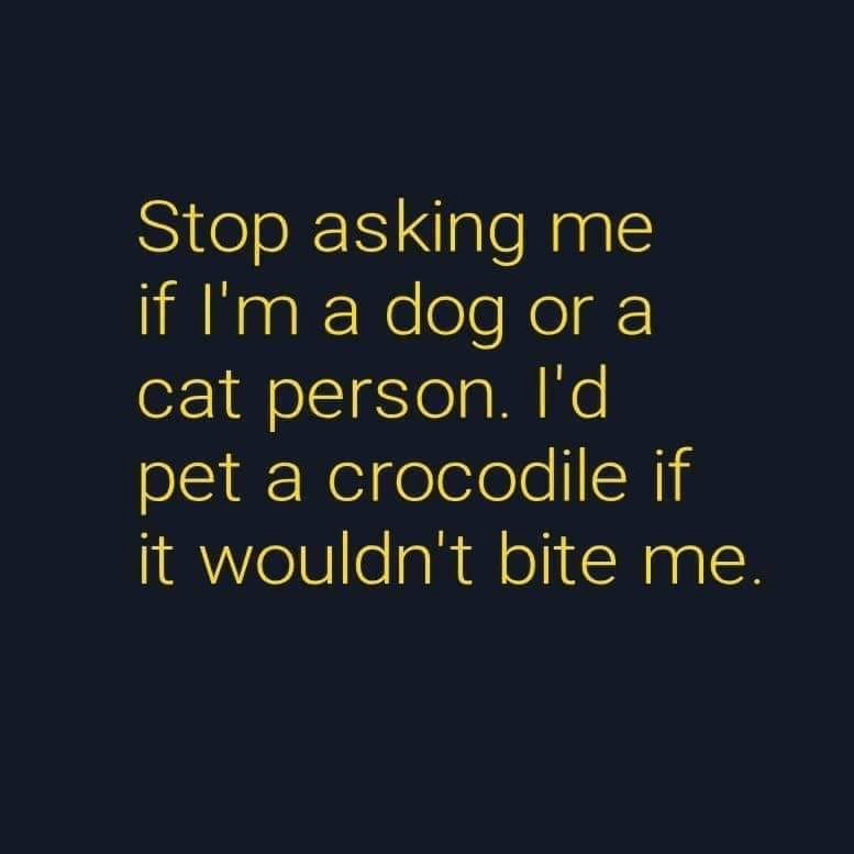 Font - Stop asking me if I'm a dog or a cat person. l'd pet a crocodile if it wouldn't bite me.