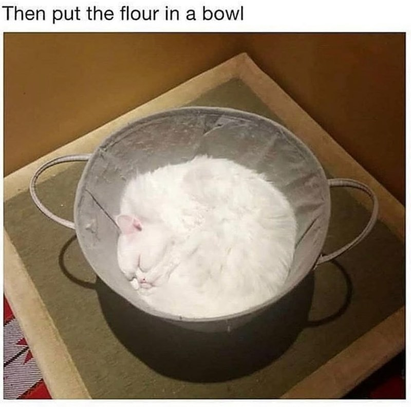 Ingredient - Then put the flour in a bowl