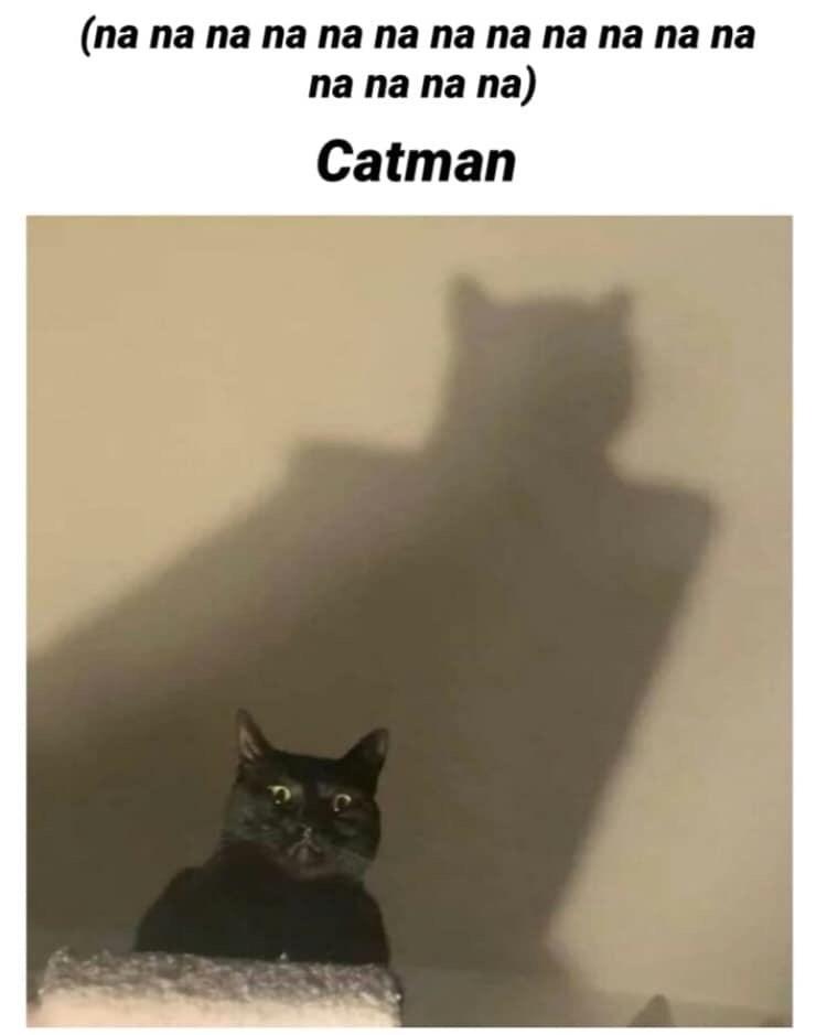Cat - (na na na na na na na na na na na na na na na na) Catman