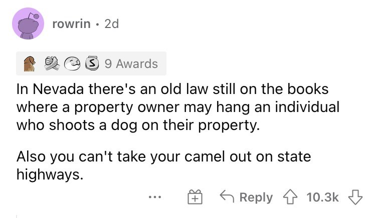 Font - rowrin · 2d O 9 Awards In Nevada there's an old law still on the books where a property owner may hang an individual who shoots a dog on their property. Also you can't take your camel out on state highways. Reply 1 10.3k +