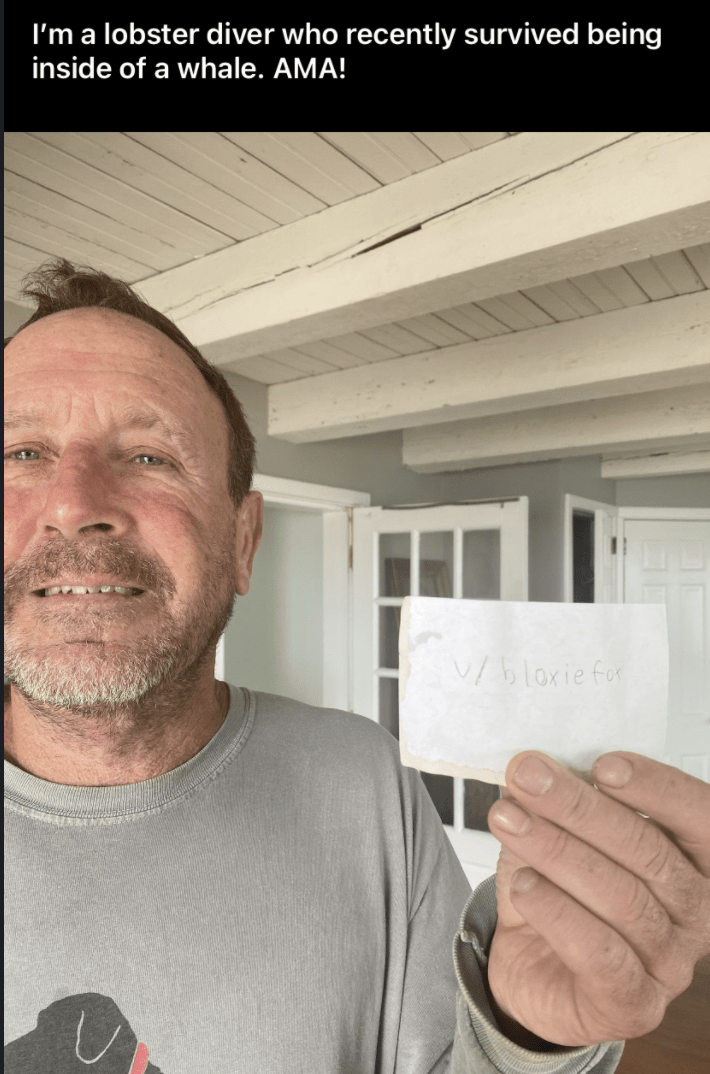 Forehead - I'm a lobster diver who recently survived being inside of a whale. AMA! V/blorie for