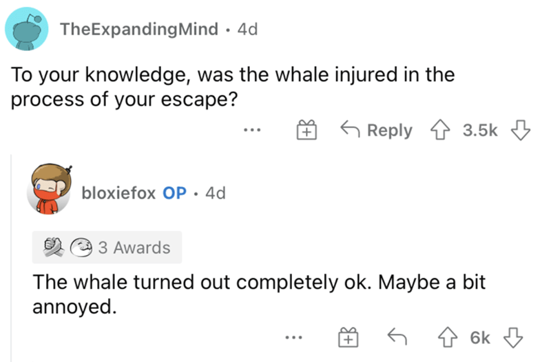 Product - TheExpandingMind · 4d To your knowledge, was the whale injured in the process of your escape? G Reply 3.5k 3 bloxiefox OP • 4d 3 Awards The whale turned out completely ok. Maybe a bit annoyed. 6k 3 ...