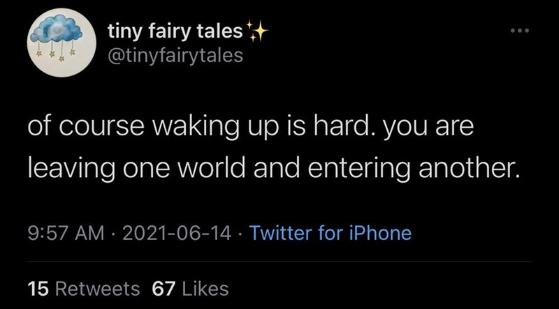 Organism - tiny fairy tales + @tinyfairytales of course waking up is hard. you are leaving one world and entering another. 9:57 AM · 2021-06-14 · Twitter for iPhone 15 Retweets 67 Likes