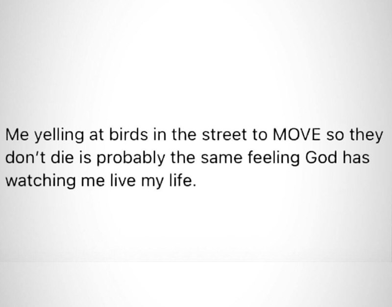 Font - Me yelling at birds in the street to MOVE so they don't die is probably the same feeling God has watching me live my life.