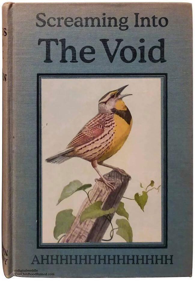 Bird - Screaming Into S The Void АНННННННННННННН @digitalmeddle YourChildhoodRuined.com 42