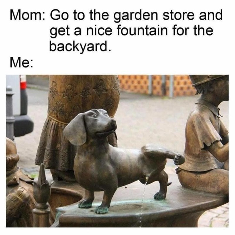 Photograph - Mom: Go to the garden store and get a nice fountain for the backyard. Me: