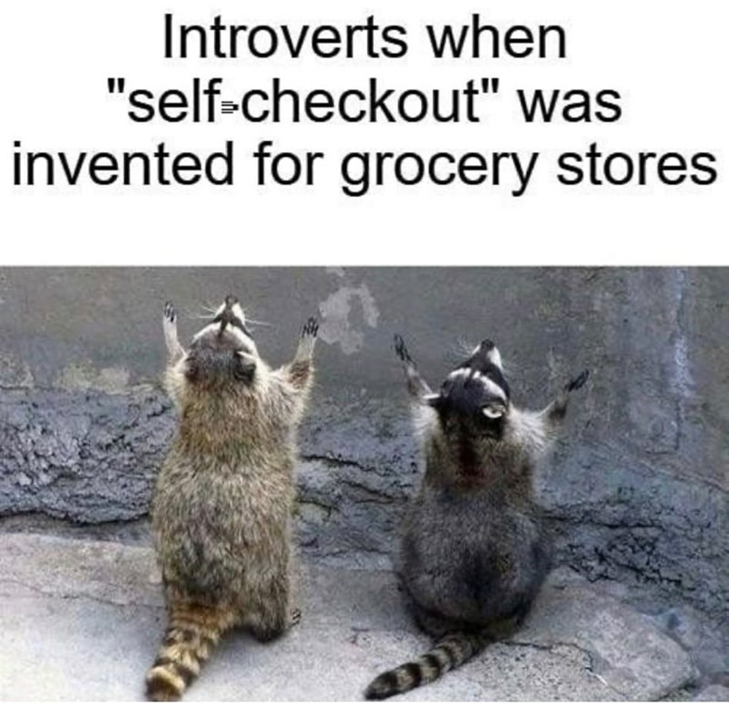 """Vertebrate - Introverts when """"self-checkout"""" was invented for grocery stores"""