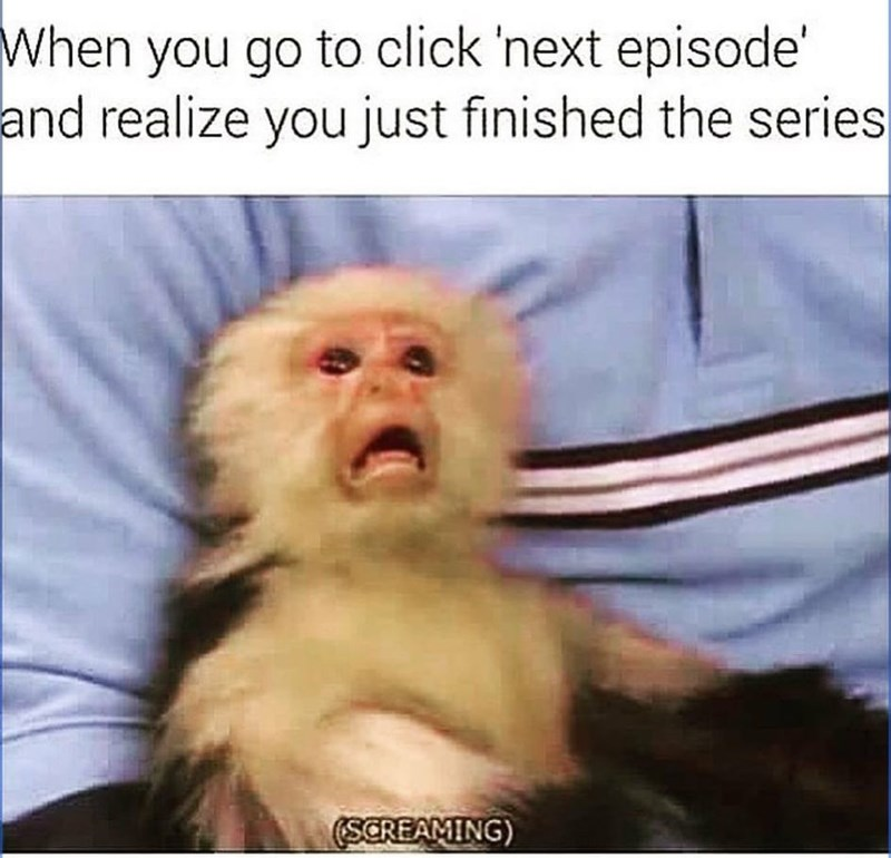 Primate - When you go to click 'next episode' and realize you just finished the series (SCREAMING)