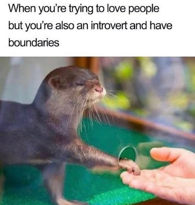 Organism - When you're trying to love people but you're also an introvert and have boundaries