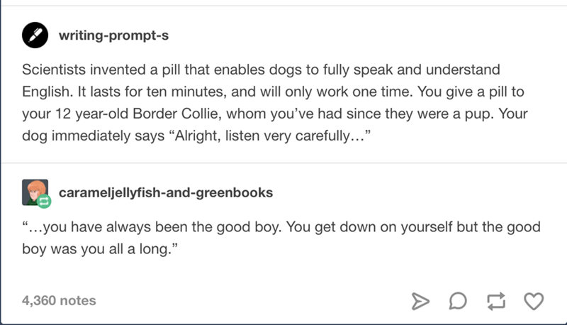"""Font - writing-prompt-s Scientists invented a pill that enables dogs to fully speak and understand English. It lasts for ten minutes, and will only work one time. You give a pill to your 12 year-old Border Collie, whom you've had since they were a pup. Your dog immediately says """"Alright, listen very carefully..."""" carameljellyfish-and-greenbooks """"...you have always been the good boy. You get down on yourself but the good boy was you all a long."""" 4,360 notes"""
