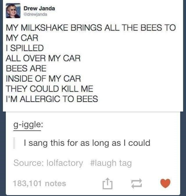 Rectangle - Drew Janda adrewjanda MY MILKSHAKE BRINGS ALL THE BEES TO MY CAR I SPILLED ALL OVER MY CAR BEES ARE INSIDE OF MY CAR THEY COULD KILL ME I'M ALLERGIC TO BEES g-iggle: sang this for as long as I could Source: lolfactory #laugh tag 183,101 notes
