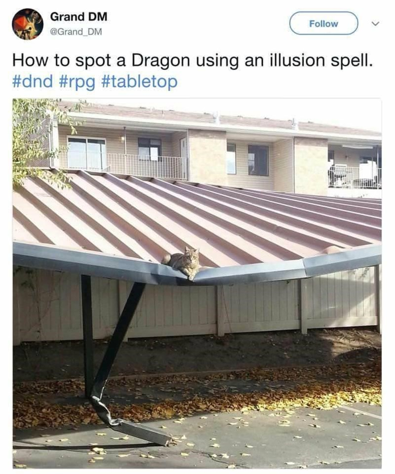 Window - Grand DM Follow @Grand DM How to spot a Dragon using an illusion spell. #dnd #rpg #tabletop
