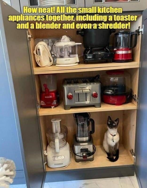 Shelf - How neat! All the small kitchen appliances together, including a toaster and a blender and even a shredder! then