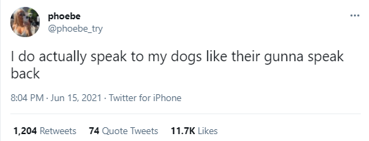 Font - phoebe @phoebe_try I do actually speak to my dogs like their gunna speak back 8:04 PM - Jun 15, 2021 - Twitter for iPhone 1,204 Retweets 74 Quote Tweets 11.7K Likes